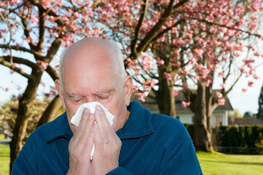Home Care Services in Clarendon Hills IL: Senior Allergies